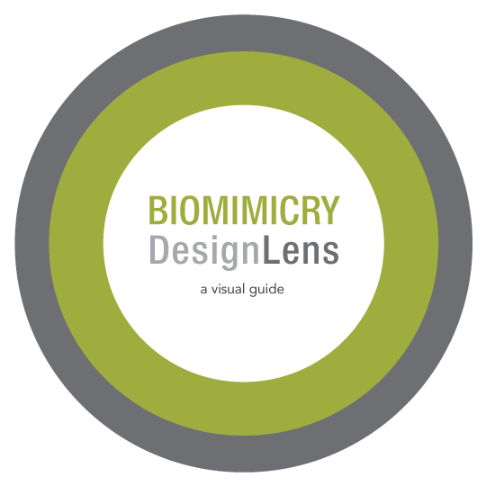designlens_cover_graphic_rgb