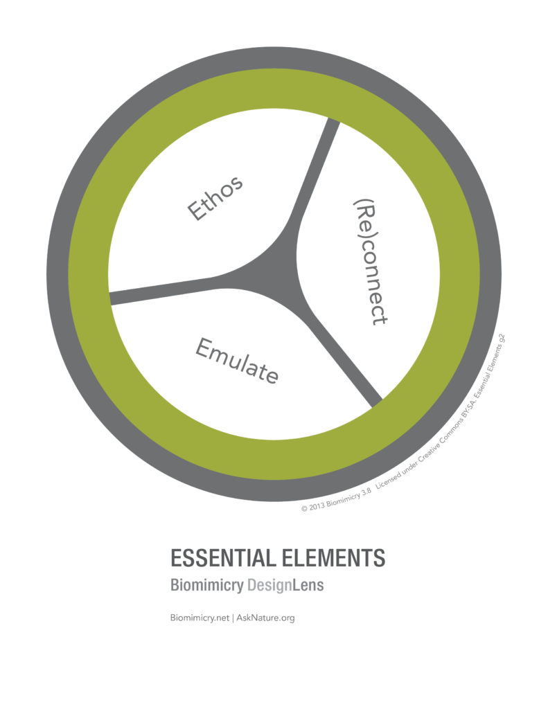 designlens_essential_elements_web