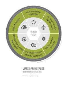 designlens_lifes_principles_top6_web